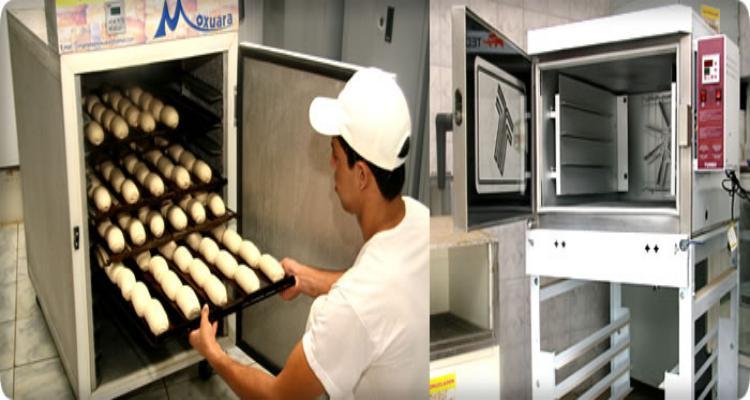 Montar uma Fábrica de Pão de Forma