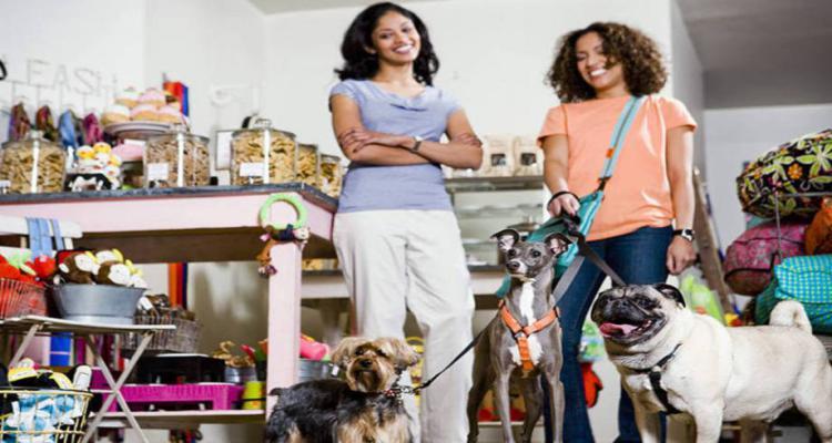 Melhores Franquias de Pet Shop para Começar Agora