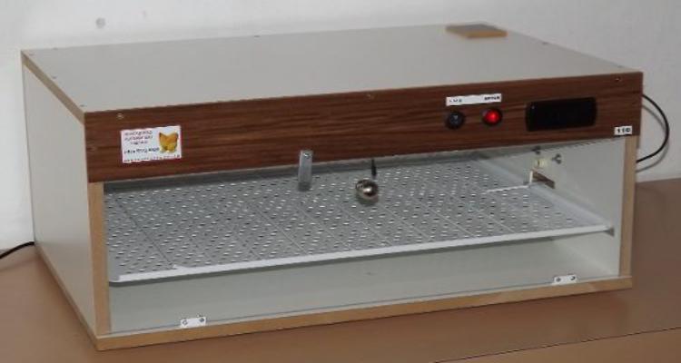 Como escolher uma chocadeira elétrica