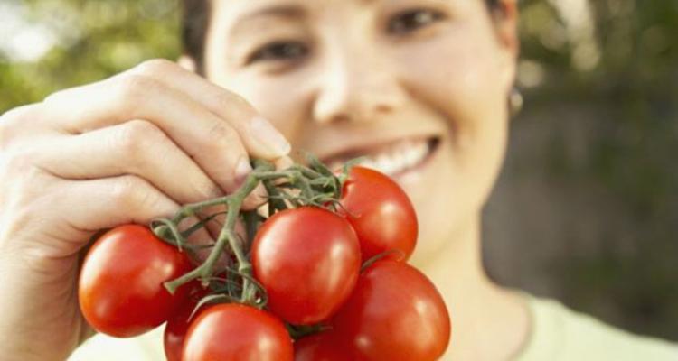 Como começar um negócio de plantação de tomate e venda