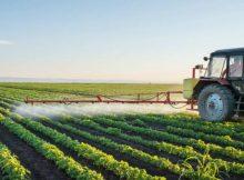 5 Ideias de Negócio rural para você começar ainda este ano